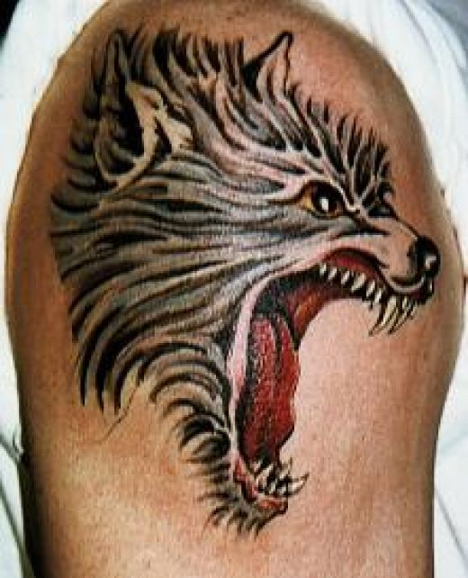 werewolf tattoo. Wolf Head Tattoos
