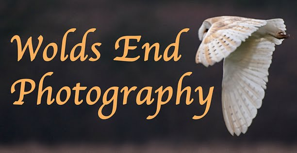Wolds End Photography