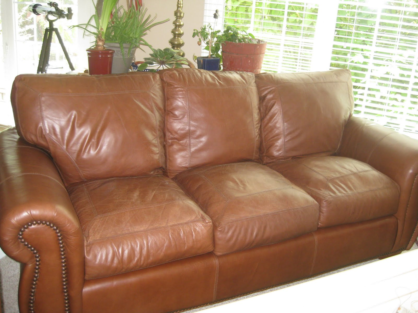 Old Couches 8 16 10 Im Like An Old Leather Couch Lap Band Groupie