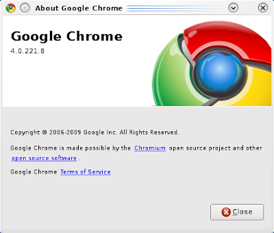Google Chrome4.0.221.8-Dev for Ubuntu/Linux
