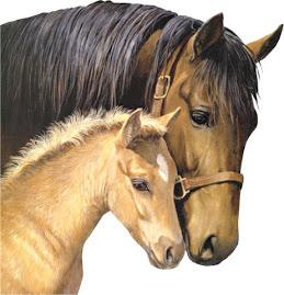 Mãe é amor seja em que espécie for...
