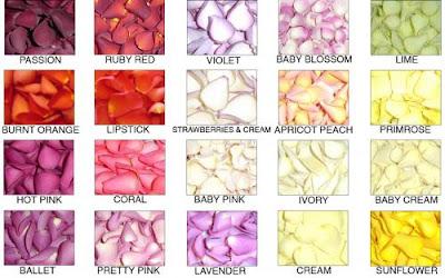 flores comestibles variedad y  recetas