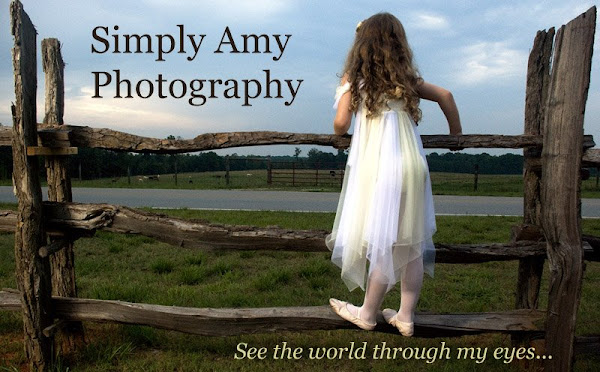 Simply Amy Photography