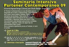 SEMINARIOS INTENSIVOS 2009