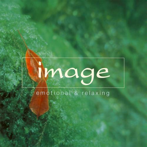 VA – Sony Image Collection – Image 1