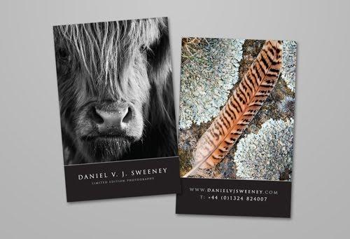 Daniel V J Sweeney Photography