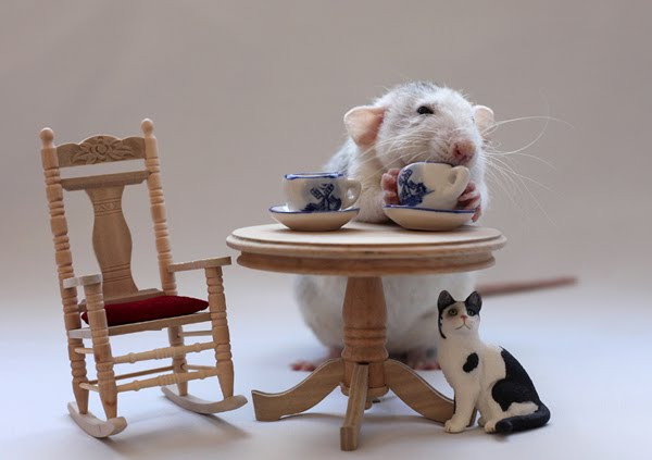 Tea-time by Ellen van Deelen