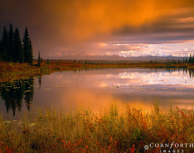Stormy Tundra