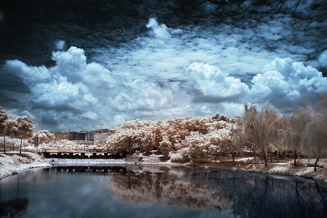 3 Digital Infrared Photography 25 Great IR Shots