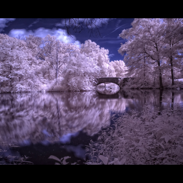 7 Digital Infrared Photography 25 Great IR Shots