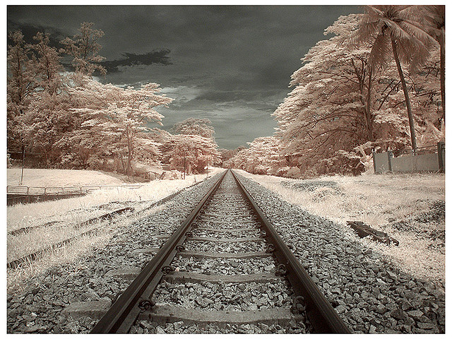 8 Digital Infrared Photography 25 Great IR Shots