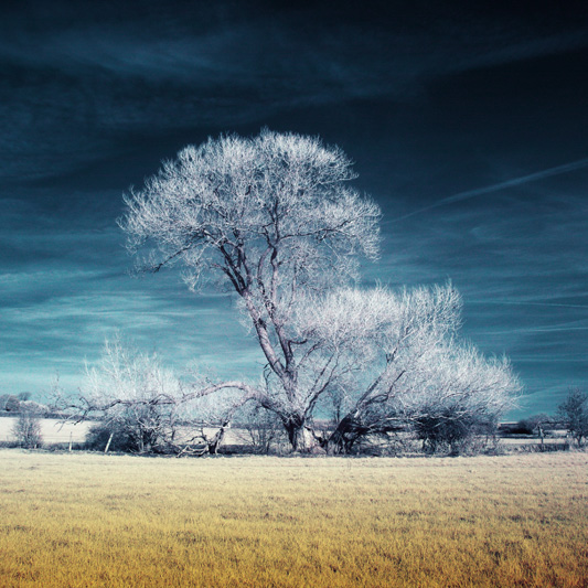 14 Digital Infrared Photography 25 Great IR Shots