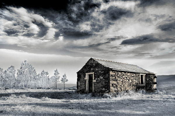 19 Digital Infrared Photography 25 Great IR Shots