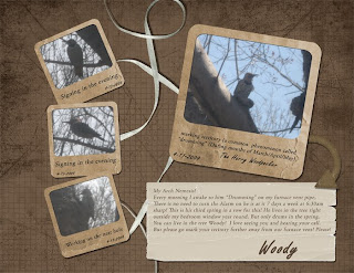http://midnightscrapping.blogspot.com/2009/04/woody-and-double-template-24.html