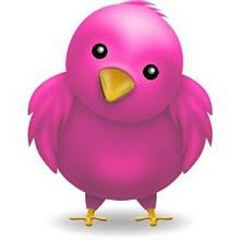 Segue a gente no Twitter também!