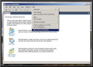 VMware Workstation v5.5.4.44386 - Thinstalled