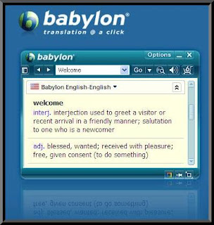 Babylon Pro 7.0.3.11 - Thinstalled