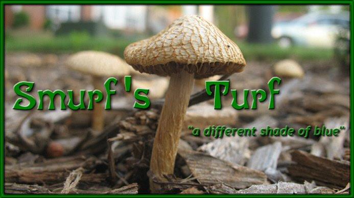 Smurf's Turf
