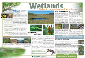 Biodiversity Conservation poster prepared in 2006