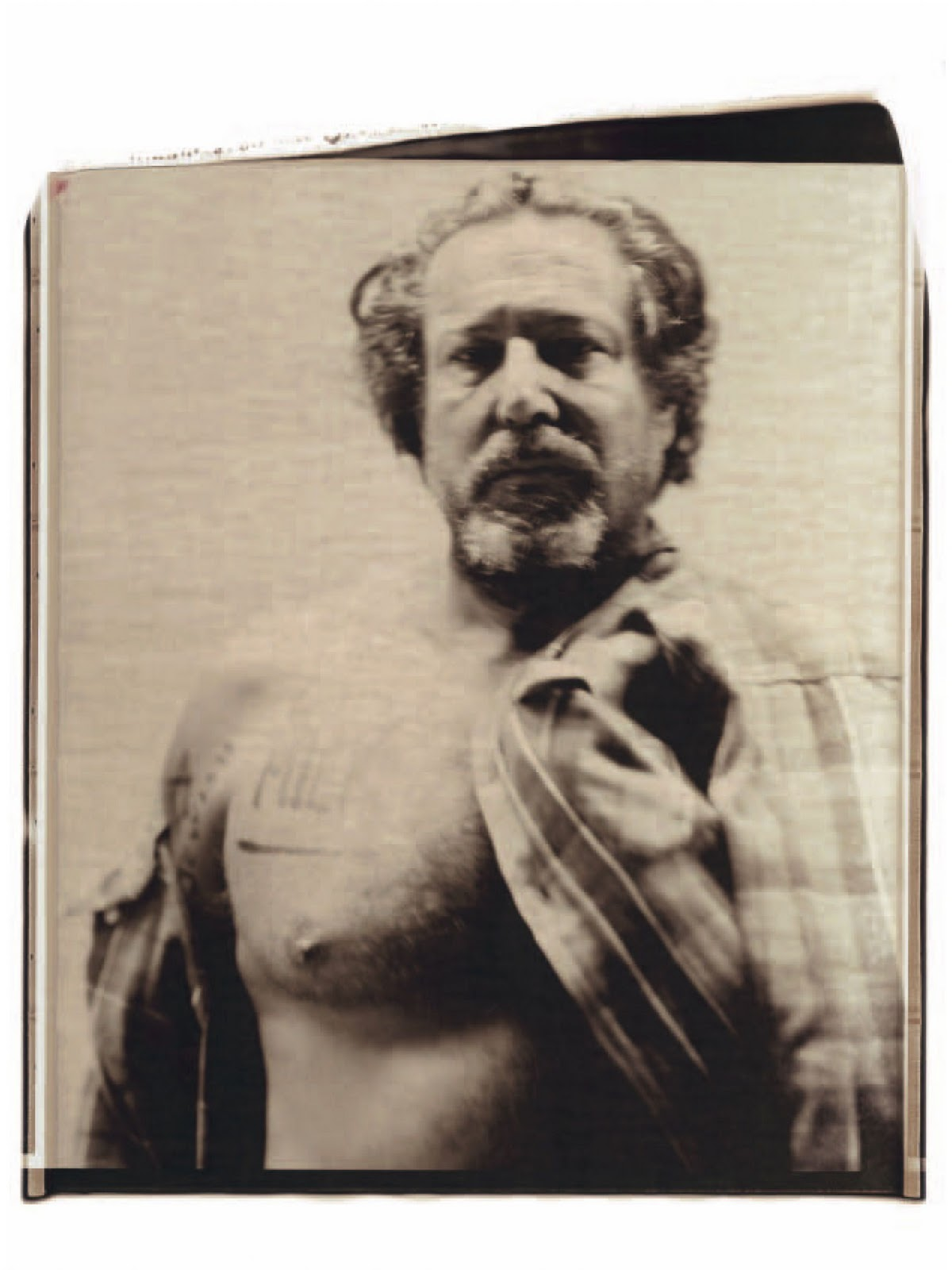 julian schnabel on paper