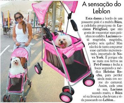 publicado no Jornal do Brasil de 18 de novembro de 2007