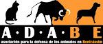 Asociación para la defensa de los animales en Benicasim