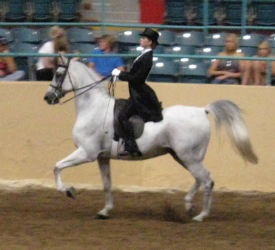 Equitation Riding