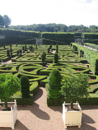 More beautiful gardens at Villandry