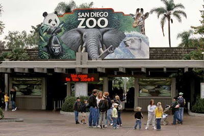 Barrie Summy: My Town Monday: San Diego Zoo Trivia
