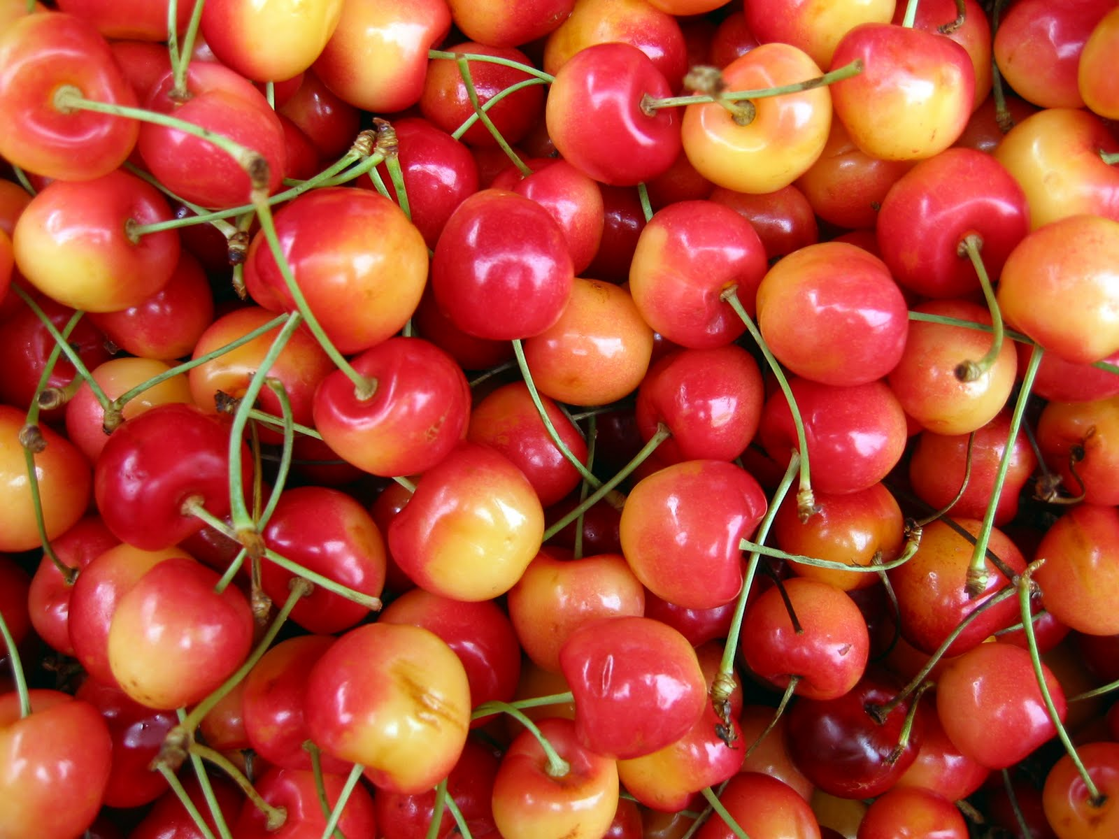 Lincoln Square Chamber Of Commerce Cherries Better Then