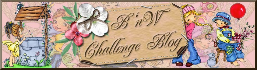 BnW Challenge Blog