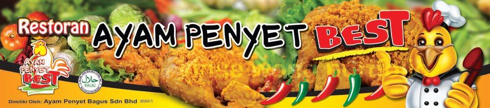 vincianart blog ayam penyet best restaurant branding