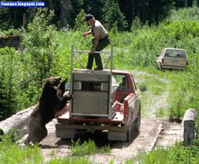 http://1.bp.blogspot.com/_bkFIPLIOGL8/S3HOm-wKGcI/AAAAAAAApEw/gG2zTu6EnK0/s400/grizz.jpg