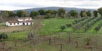 Avellino Irpina