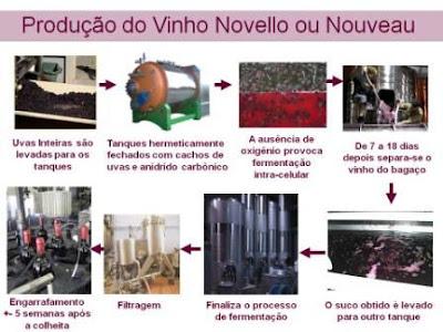 Processo de produção de vinho