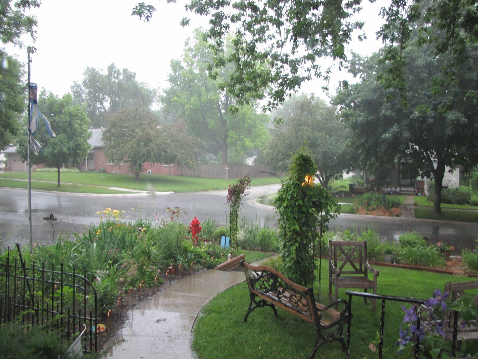 A Corner Garden: A Rainy Day for Garden Tours