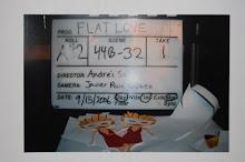 FLAT LOVE ALBUM