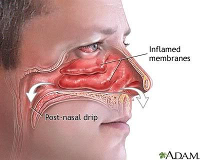 Ternyata lubang hidung kanan dan kiri ada fungsinya masing-masing