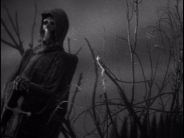 frankenstein and the creature essay
