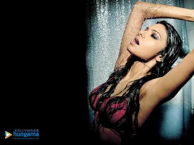 Sherlyn Chopra armpit