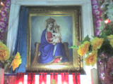meerut sardhana uttar pradesh india sugarcane mustard fields lady graces church samru tourism backpacking