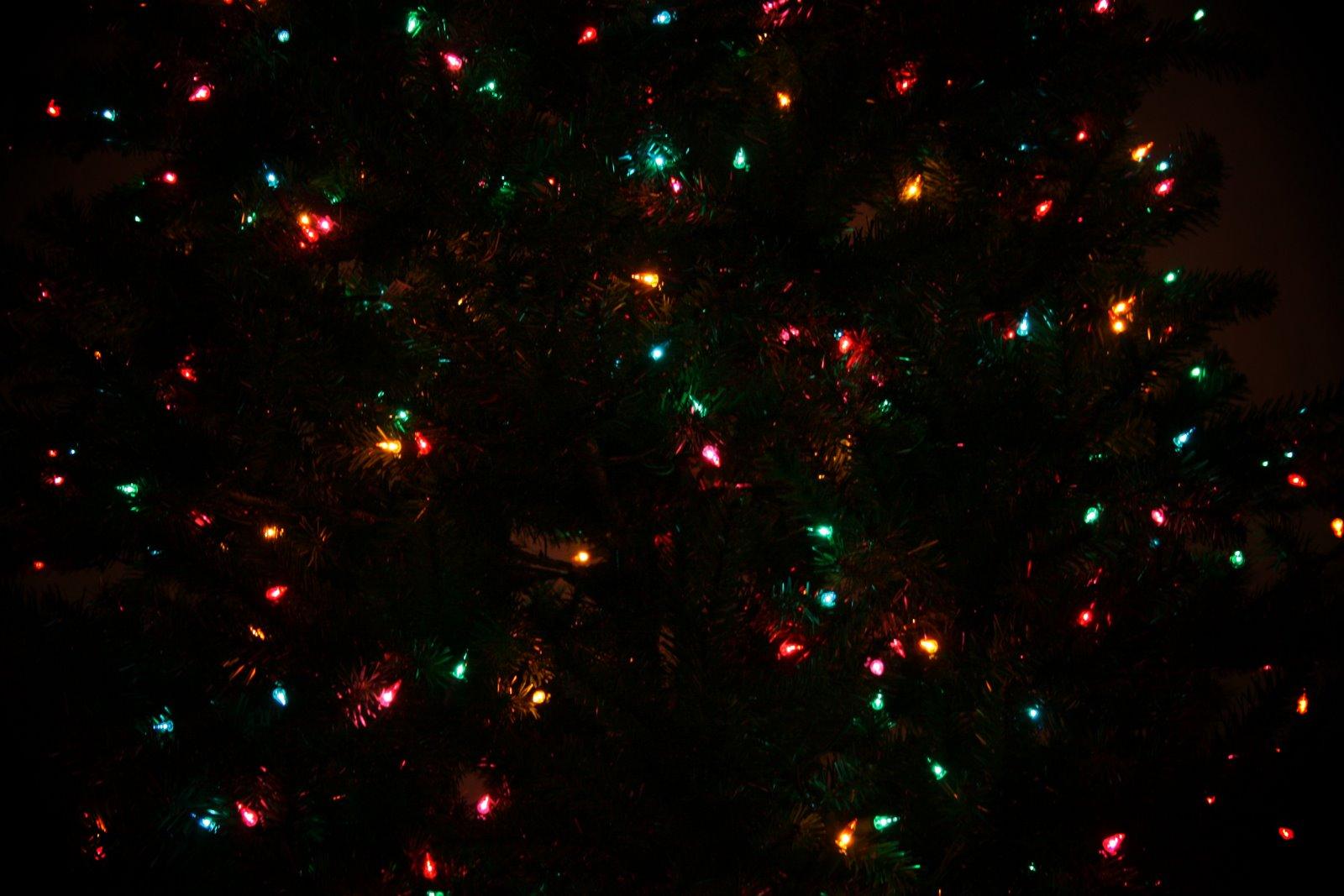 [f5.6+lights]