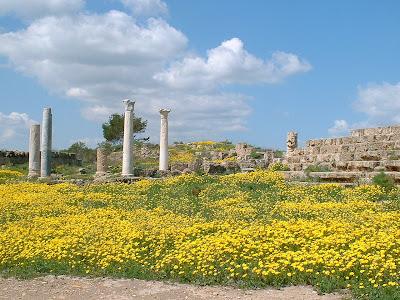Roman Ruins, Salamis