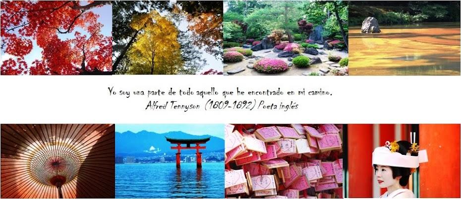 Destino: Japón