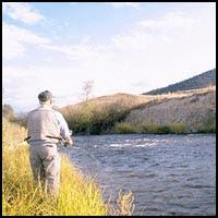 Fishing Forever