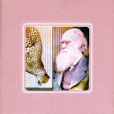 Slow and Steady Charles Darwin