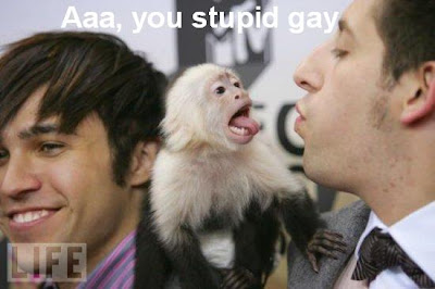 Monkey screaming on gay
