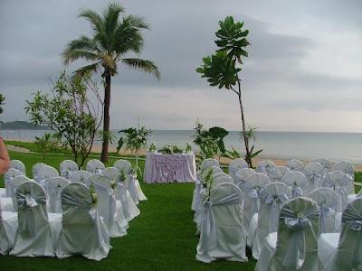 Wedding decoration junglespirit Image collections