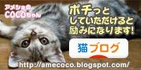 猫ブログランキング