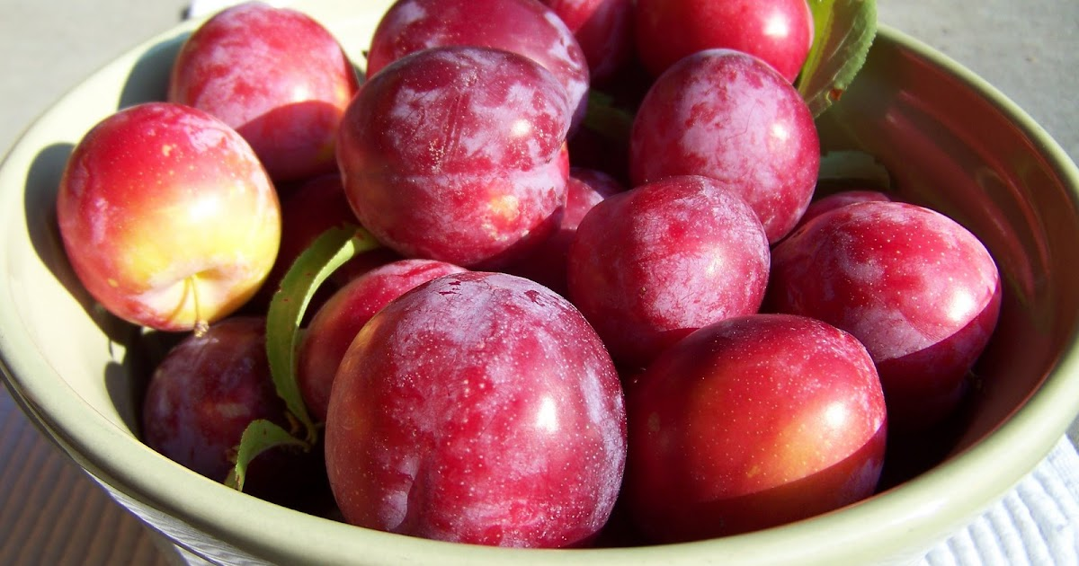 Substitute For Baby Food Plums